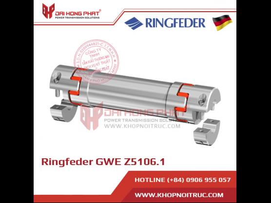 Khớp nối động cơ Servo Ringfeder GWE Z5106.1