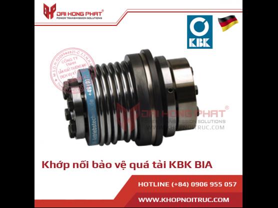 Khớp nối bảo vệ quá tải KBK BIA